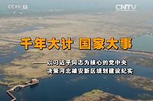 【视频】千年大计 国家大事——以习近平同志为核心的党中央决策河北雄安新区规划建设纪实