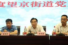 望京街道召开2018年街道党建大会