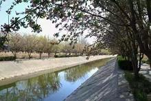 昔日望京臭水沟变身景观河道