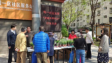 东湖利一社区举办第四届绿植兑换活动