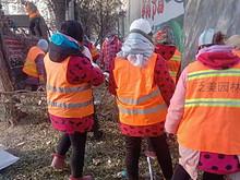 接诉即办 | 望京西路:干枯树枝无人清,社区及时处理消隐患